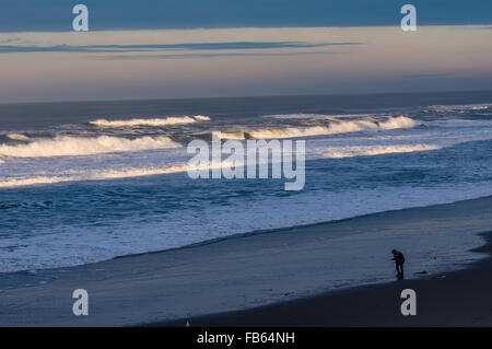 Beachcomber walking along the coast looking for finds, Oregon, USA - Stock Photo
