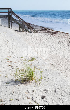 Vero Beach, USA. The grass on the sandy beach with a view of a boardwalk. - Stock Photo