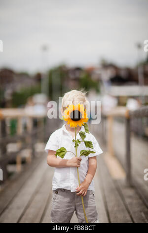 Germany, Bayern, Boy (4-5) holding sunflower - Stock Photo