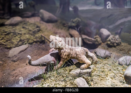Small model of a Saber-Toothed cat killing a young elephant. - Stock Photo