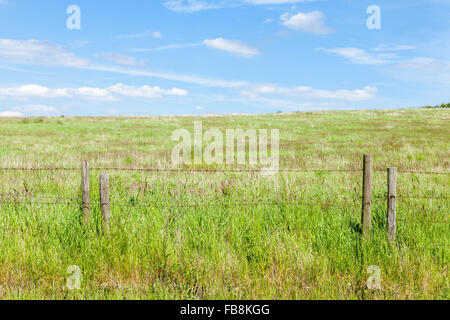 Field fenced off with a rusty barbed wire fence on wooden posts - Stock Photo