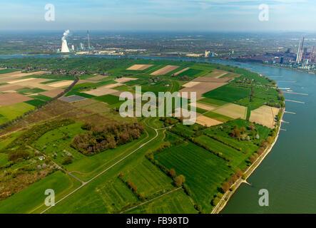 Aerial view, Rheinauhafen bins Feld with the bins Straße and Binsheim, behind the bins Heimer Rheindamm, flood protection, - Stock Photo