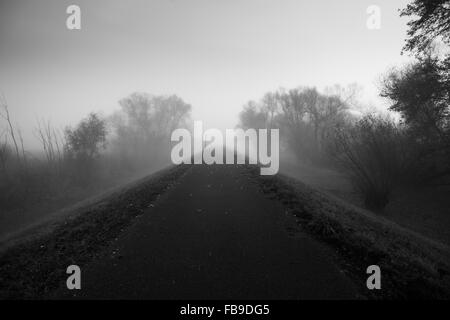 Path going off into the distance on a foggy day - Stock Photo