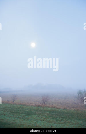 View over fields with moon and haze - Stock Photo