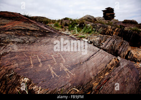 Ancient petroglyphs depicting Bactrian camels and people in the Gobi Desert, Mongolia. - Stock Photo