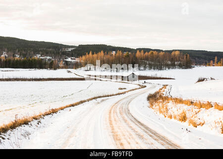 USA, Dalarna, Jarvso, Dirt road covered with snow under cloudy sky - Stock Photo