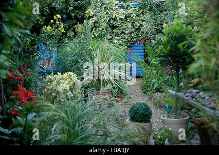 Small garden in London, UK. Designed by Rebecca Erol - Stock Photo