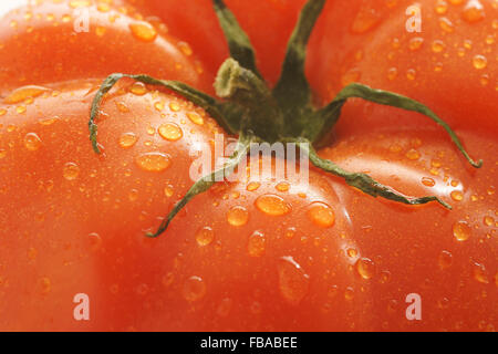 Fresh and plump beefsteak tomato - Stock Photo