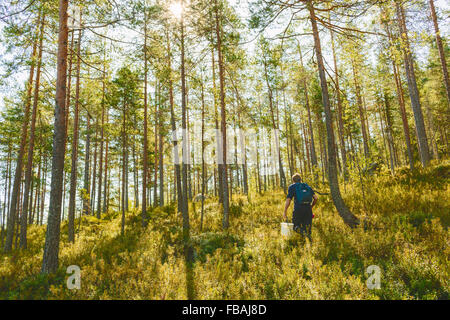 Finland, Keski-Suomi, Jyvaskyla, Man walking in pine forest - Stock Photo