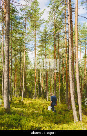 Finland, Keski-Suomi, Jyvaskyla, Man hiking in pine forest - Stock Photo