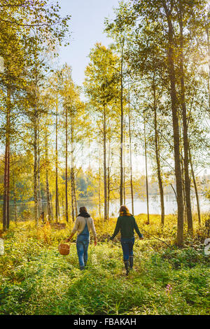Finland, Etela-Savo, Huttula, Two women picking mushrooms in forest - Stock Photo