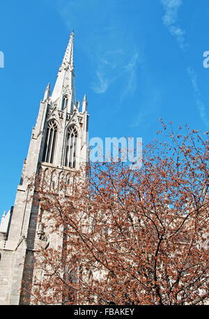 New York, Usa: view of the Cathedral of St. Patrick, a decorated Neo Gothic style Roman Catholic cathedral church - Stock Photo