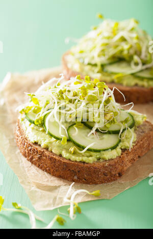 healthy avocado toast with cucumber radish sprouts - Stock Photo