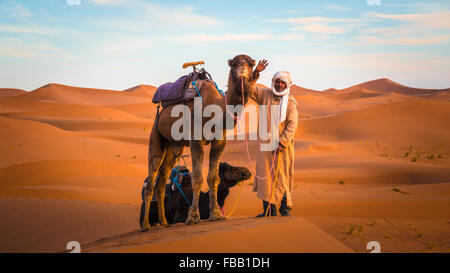 The camel guide - Stock Photo