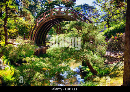 Low Angle View of a Moon Bridge Over a Small Creek in a Japanese Garden, Golden Gate Park, San Francisco, California - Stock Photo