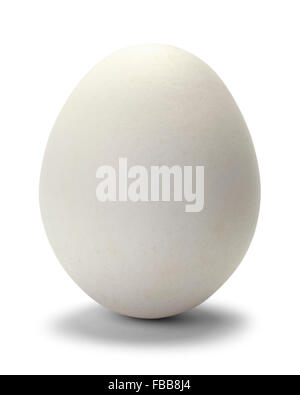 One Chicken Egg Isolated on White Background. - Stock Photo