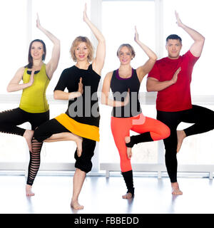 Group of four happy people doing yoga training in class, standing in asana, Tree Pose, vrikshasana (Vriksasana) - Stock Photo