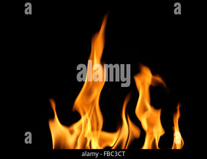 Flames against Black Background - Stock Photo