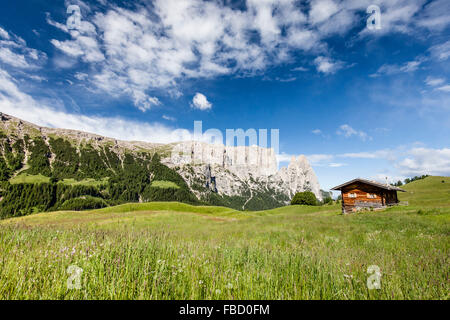 Spring on the Seiser Alm mountain pasture in the Schlern-Rosengarten nature park, mountain hut, behind the Sciliar, - Stock Photo