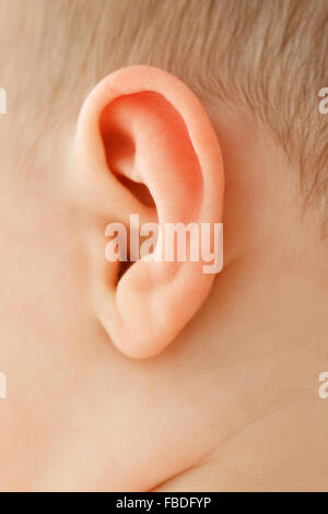 Close up of Baby's Ear - Stock Photo