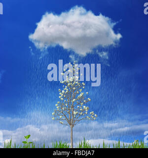 Growth and success concept in the form of a small blooming tree and green grass underneath a rain cloud - Stock Photo