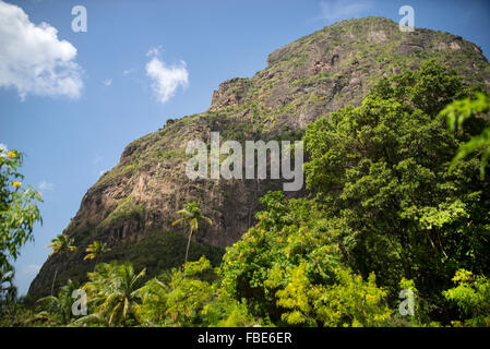 Petit Piton & palm trees seen from Sugar Beach resort, St Lucia - Stock Photo