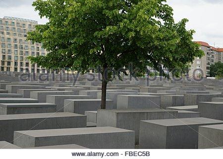 Tree Amidst Holocaust Memorial - Stock Photo