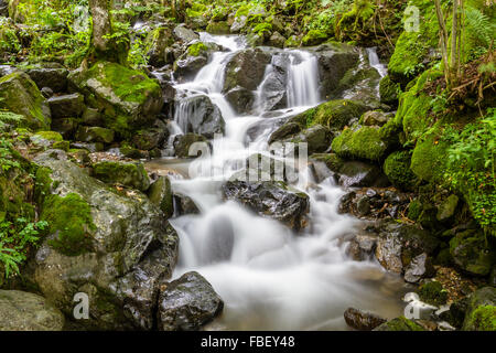 Extension of the Todtnau Waterfall in the Black Forest, Germany - Stock Photo