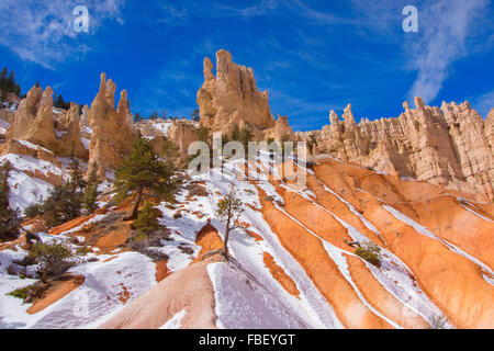 Winter in Bryce Canyon - Stock Photo