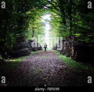 Rear View Of Man Walking On Footpath Amidst Firewood Stacks In Forest - Stock Photo