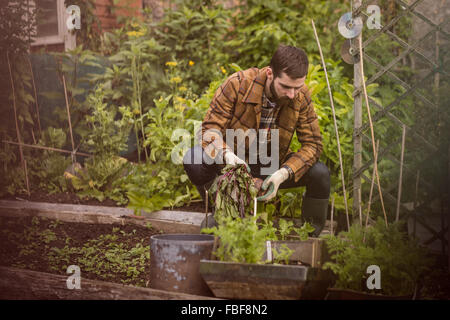 Young man holding vegetables - Stock Photo