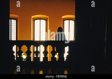 Silhouette Person Standing Against Windows - Stock Photo