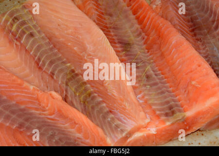 Frozen salmon fillets thawing on plate for dinner preparation - Stock Photo