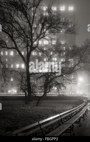 Fog in Central Park at night. Trees become silhouettes lit by the Upper West Side high-rise buildings. Manhattan, - Stock Photo
