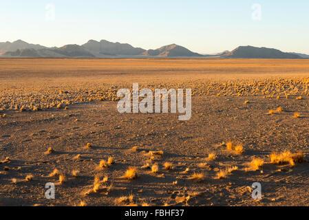 Desert scene, Namib Naukluft Park, Namib Desert, Republic of Namibia - Stock Photo