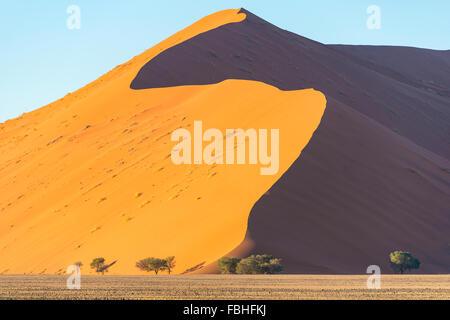 Dune at sunrise, Sossusvlei, Namib Desert, Namib-Naukluft Park, Hardap Region, Republic of Namibia - Stock Photo