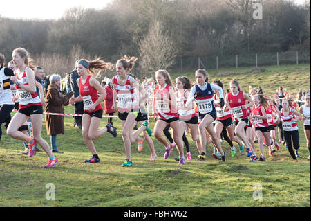 The Annual Knole Run Sevenoaks School cross country youth mile run in teams tough endurance race - Stock Photo