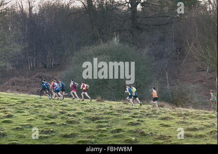 mass of crosscountry runners embarking on the first major hill to a cold frozen grassland slope in winter - Stock Photo