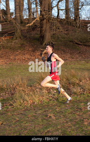 Winner of the  42nd Boys Annual Knole Run Sevenoaks School cross country racing to finish line cold frozen grassland - Stock Photo