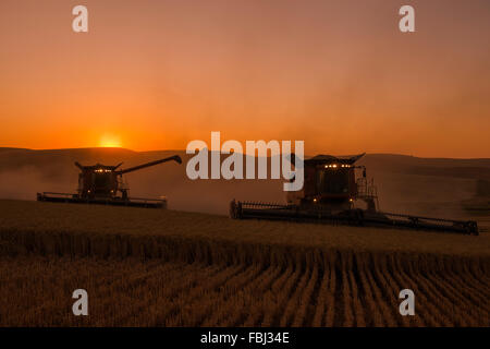 Case combines harvesting wheat at sunset in the Palouse region of Washington - Stock Photo