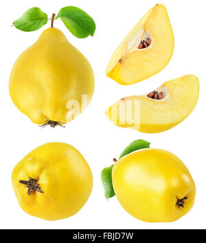 Quince fruits whole and cut collection isolated on white with clipping path - Stock Photo