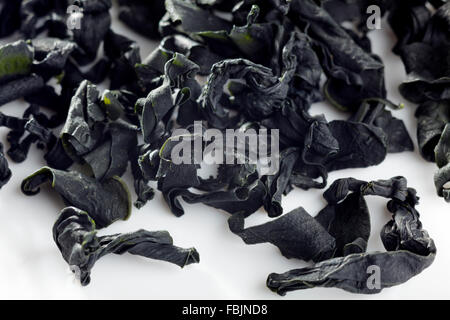 Wakame seaweed - Stock Photo