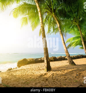 Sunrise on a sandy beach near the ocean in Gala - Stock Photo