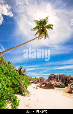 Paradise beach of Seychelles - La Digue - Anse Cocos - Stock Photo