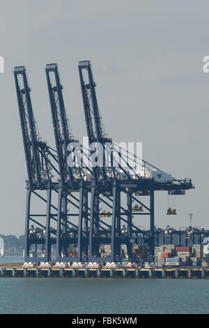 Container cranes the Port of Felixstowe in England, UK. - Stock Photo