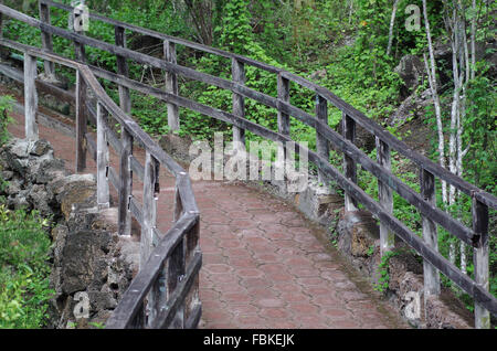 Patterned stone path for tourists with wooden railing sorrounded by green vegetation on Galapagos Islands, Ecuador. - Stock Photo
