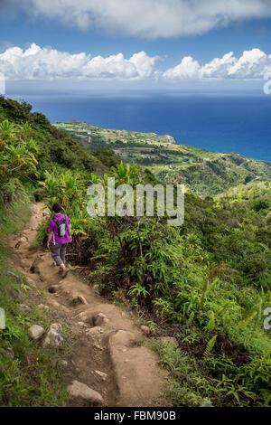 Woman hiking, Waihee, Maui, Hawaii, America, USA - Stock Photo