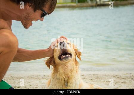 Man stroking golden retriever dog on beach - Stock Photo