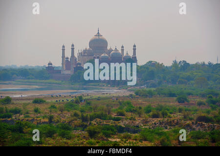 Taj Mahal seen from Agra Fort, Agra, India - Stock Photo