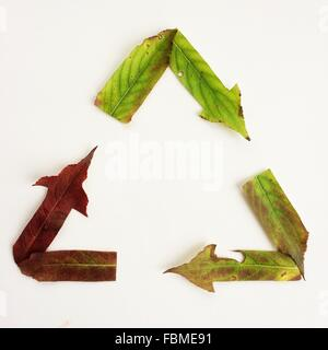 Recycling symbol made from autumn leaves - Stock Photo